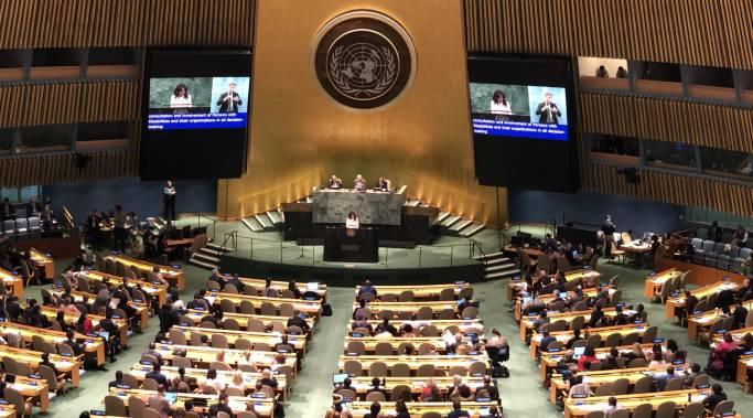 VOSAP at UN